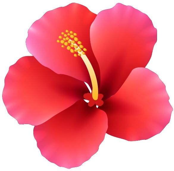 květ ikonka